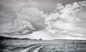 Кэпитал Оценка. Оценка земели и земельных участков